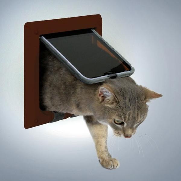 Вход в дверь для кота