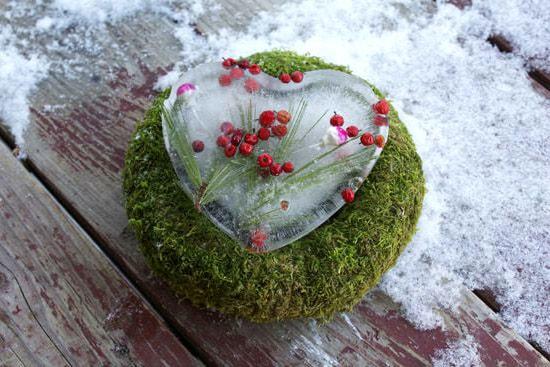 сердце изо льда
